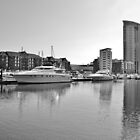 Swansea Marina & Meridian Tower by Paula J James