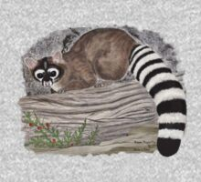 Ringtail Cat (T-Shirt) by Walter Colvin