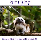 Inspirational Poster: belief by Webitect