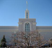 Mount Timpanogos, Utah Temple by jeffreynelsd