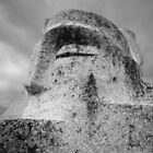 Stone Face by Paul Thompson