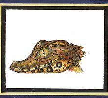 Baby Gator Drawing by John Symonette
