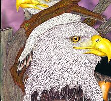 Eagles Drawing by John Symonette