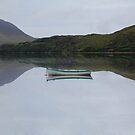 Reflection on the lake Cliften Connemara Galway by Declan Carr
