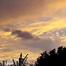 July 2012 Sunset 1 by dge357