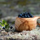 Blueberries by ilpo laurila