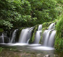 Lathkill Falls by Jon Bradbury