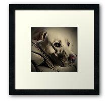 Brannoc Framed Print