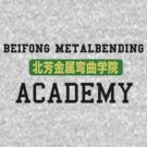 Beifong Metalbending Academy by ashleighdearest