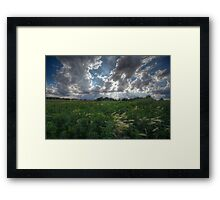 Blowing In Framed Print