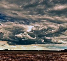 Cumulus Clouds3 by Peterwlsn