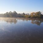 Morning Gold: Clarence River by SunshineKaren