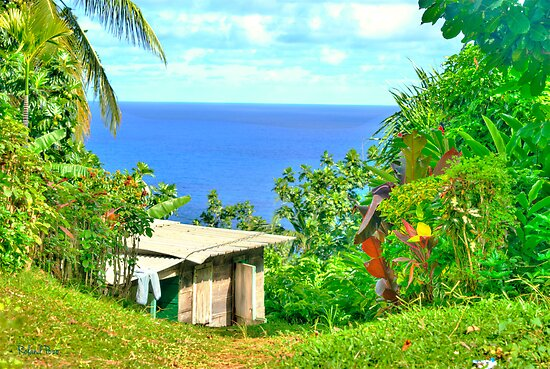 Shack with a View by Roland Pozo