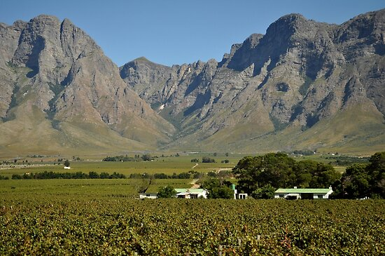 Western Cape farmlands by Karen01