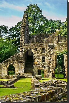 Kirkstall Abbey #5 by Colin Metcalf