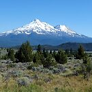 The Back Of Beyond - Mt. Shasta, Siskiyou County, CA by Rebel Kreklow