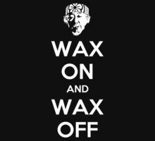 Wax On and Wax Off by gorillamask