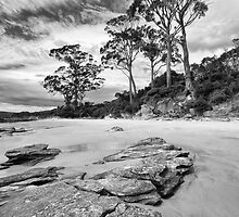 Bruny Island Beach by Andrew Fuller