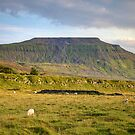Evening Sun Over Ingleborough by Mat Robinson