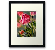 Spring Breeze - Watercolor Painting of Pink Tulips Framed Print