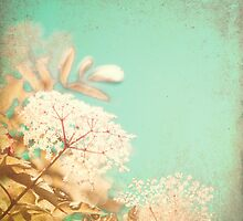 White little flowers on blue textured sky  by Andreka