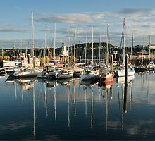 Scarborough harbour in evening light No 3 by StephenRB