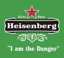 Heisenberg I am the Danger by williken