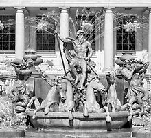 Neptune's Fountain by Chris Tarling