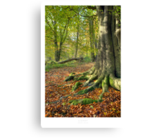 Lickey Canvas Print