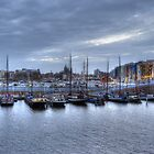 Port of Amsterdam 2 by stereoscopic