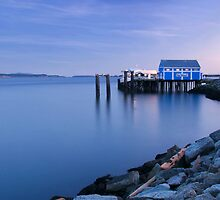 Fish market, Sidney-by-the-Sea by fearonwoodphoto