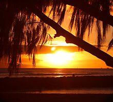 Maui Sunset by Ashley  Langtry