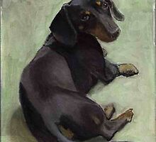 Black Dachshund in the sun by Michael Werner