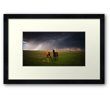 Horses In The Storm Framed Print