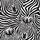 Zebras iPhone Case by Lisann