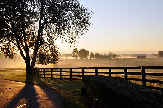 Farm Sunrise Kentucky by John Carey