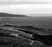 Cattle Point Lighthouse - An expression in Black & White by Joseph Noonan Photography