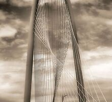 Calatrava by SuddenJim