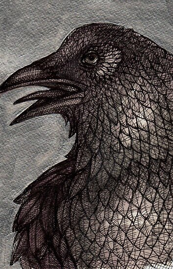 Old Raven by Lynnette Shelley