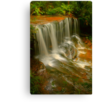 Lower Somersby Falls .. Portrait view Canvas Print