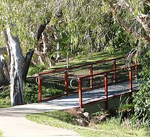Sturdy Bridge, Riverside Park, Townsville Que. by Rita Blom