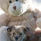 Furry Friends by Michelle *