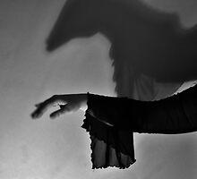 Shadowed totem: horse by Karen01