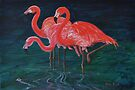 Pink Flamingos by Mike Paget