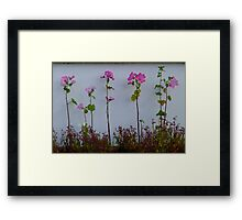 Pretty Maids All In A Row Framed Print