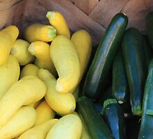 Cucumbers & Squash by B.L. Thorvilson