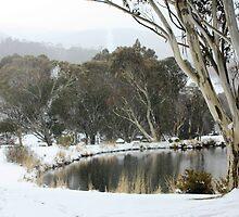 Thredbo Village, NSW by Tim Coleman