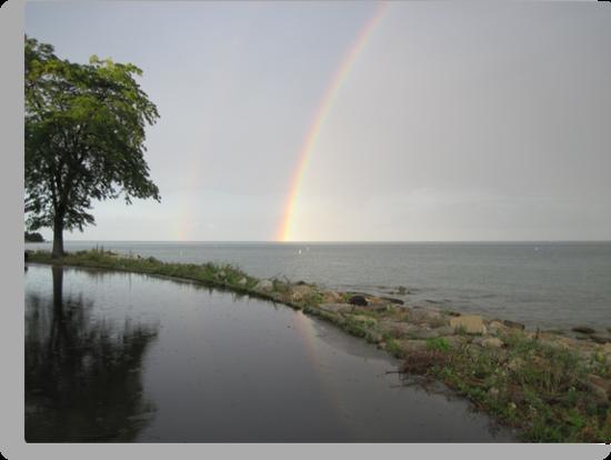 Rainbows by Thomas Murphy