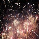 Fireworks!! by PerkyBeans