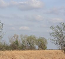 Kansas Colorful Countryside by ROBERTDBROZEK